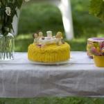 brujula tartas otras 057 150x150 - Más ejemplos de tartas